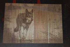 Foto op teak hout